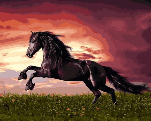 Фото Картины на холсте по номерам, Животные. Птицы. Рыбы... VP 1257 Прыжок лошади Картина по номерам на холсте 40х50см