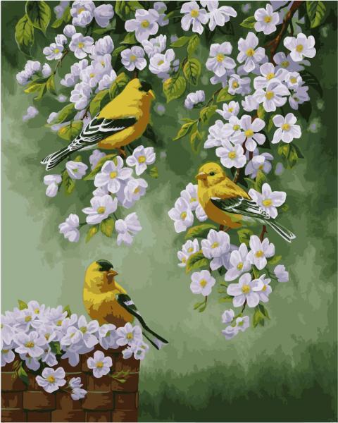 Фото Картины на холсте по номерам, Картины  в пакете (без коробки) 50х40см; 40х40см; 40х30см, Животные, птицы, рыбы KHO 2427