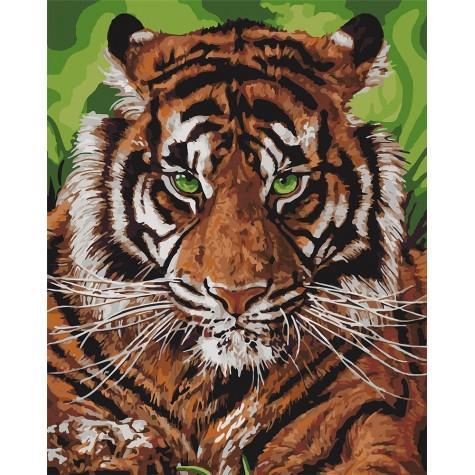 Фото Картины на холсте по номерам, Картины  в пакете (без коробки) 50х40см; 40х40см; 40х30см, Животные, птицы, рыбы KHO 4143 Непобедимый тигр Картина по номерам на холсте 40х50см, без коробки