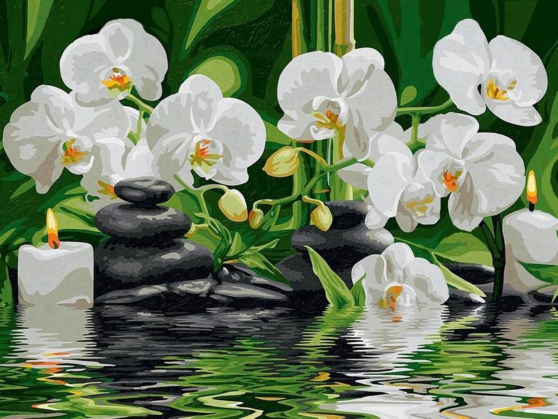 Фото Картины на холсте по номерам, Букеты, Цветы, Натюрморты VK 012