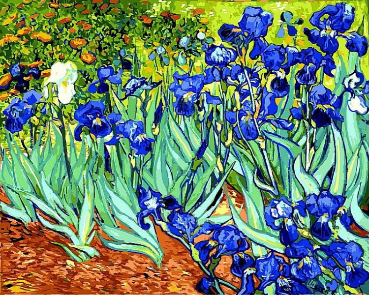 Фото Картины на холсте по номерам, Букеты, Цветы, Натюрморты VP 501 Ирисы Ван Гог Роспись по номерам на холсте 40х50см