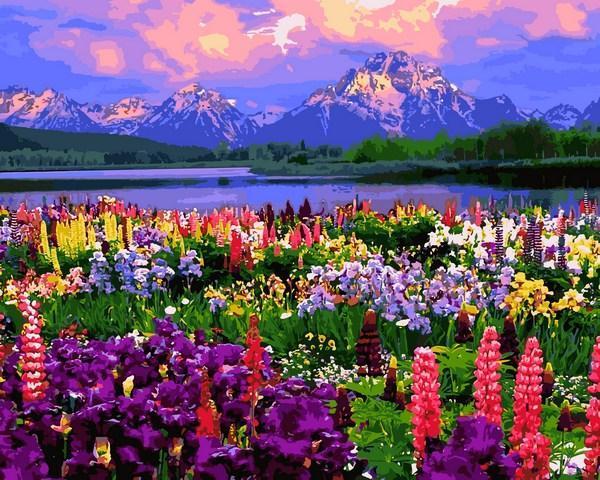 Фото Картины на холсте по номерам, Картины по номерам 50х65см VPS 1253 Полевые цветы Картина по номерам на холсте 50х65см