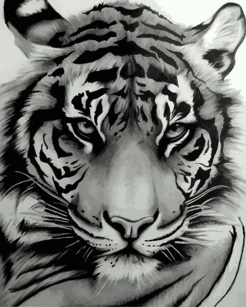 Фото Картины на холсте по номерам, Животные. Птицы. Рыбы... VP 1194 Величественный тигр Роспись по номерам на холсте. 40х50см