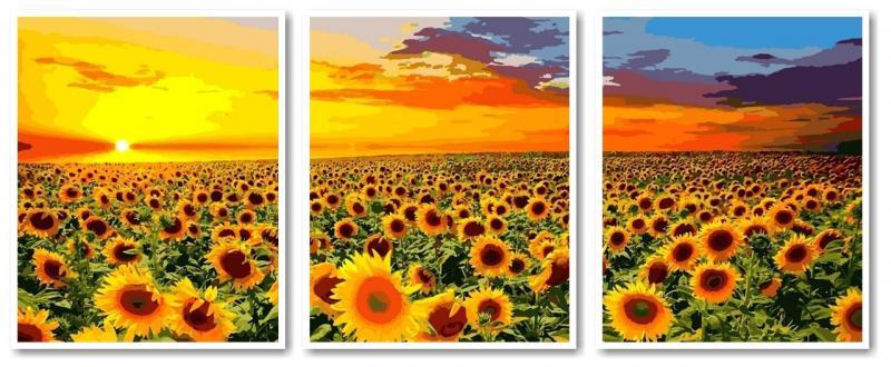 Фото Картины на холсте по номерам, Триптих, диптих VPT 041 Поле подсолнухов Роспись по номерам на холсте 50х120см
