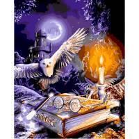 Фото Картины на холсте по номерам, Животные. Птицы. Рыбы... VP 1119 Практическая магия Гарри Поттер Роспись по номерам на холсте 40х50см