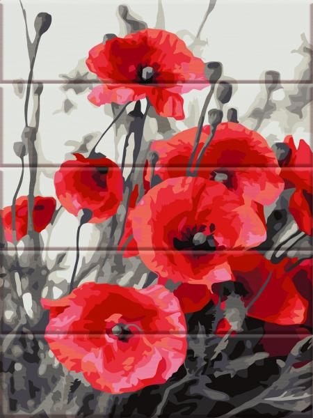 Фото  ASW 108 Удивительные маки Картина по номерам на дереве 30х40 см