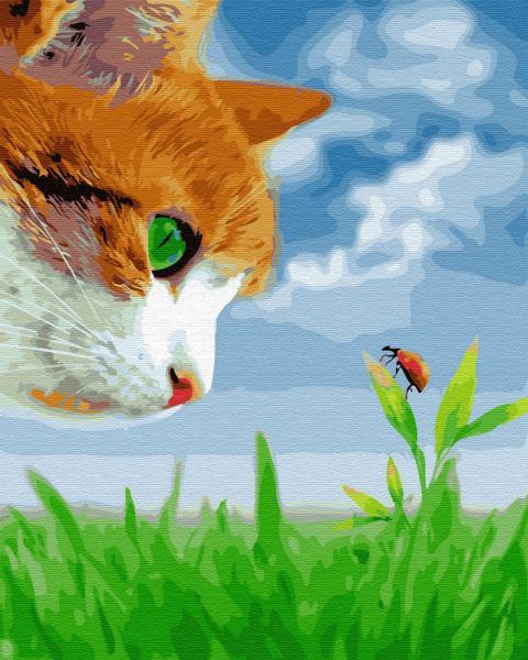 Фото Картины на холсте по номерам, Животные. Птицы. Рыбы... KGX 27195 Котик и божья коровка Картина по номерам  40х50см в коробке