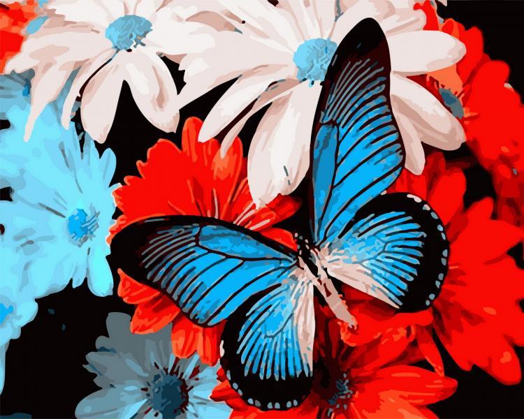 Фото Картины на холсте по номерам, Животные. Птицы. Рыбы... KGX 29329 Голубая бабочка Картина по номерам  40х50см в коробке