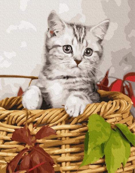 Фото Картины на холсте по номерам, Животные. Птицы. Рыбы... KGX 26366 Котёнок в корзине Картина по номерам на холсте 40х50см