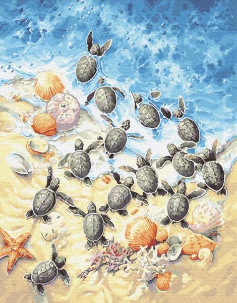 Фото Картины на холсте по номерам, Картины  в пакете (без коробки) 50х40см; 40х40см; 40х30см, Животные, птицы, рыбы GX 29097 Морские черепахи Картина по номерам на холсте 40х50см, без коробки