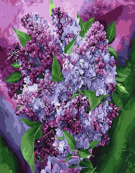 Фото Картины на холсте по номерам, Букеты, Цветы, Натюрморты KGX 29389 Сиреневое цветение Картина по номерам на холсте 40х50см