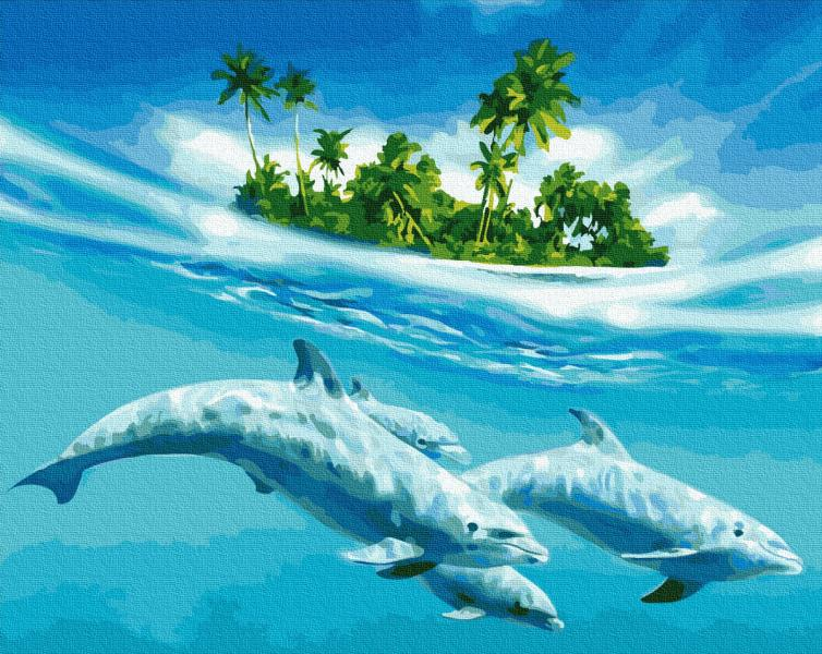 Фото Картины на холсте по номерам, Картины  в пакете (без коробки) 50х40см; 40х40см; 40х30см, Животные, птицы, рыбы GX 27574 Плавание с дельфинами Картина по номерам на холсте 40х50см без коробки, в пакете
