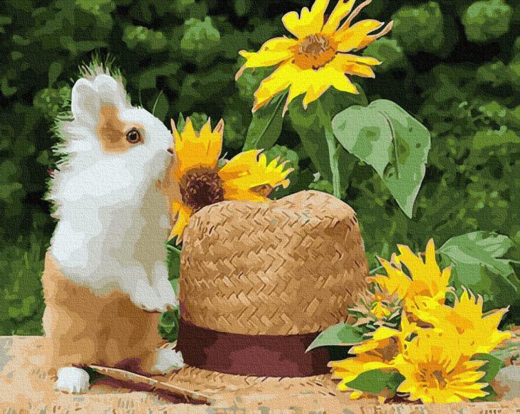 Фото Картины на холсте по номерам, Животные. Птицы. Рыбы... KGX 28853 Домашний кролик Картина по номерам на холсте 40х50см