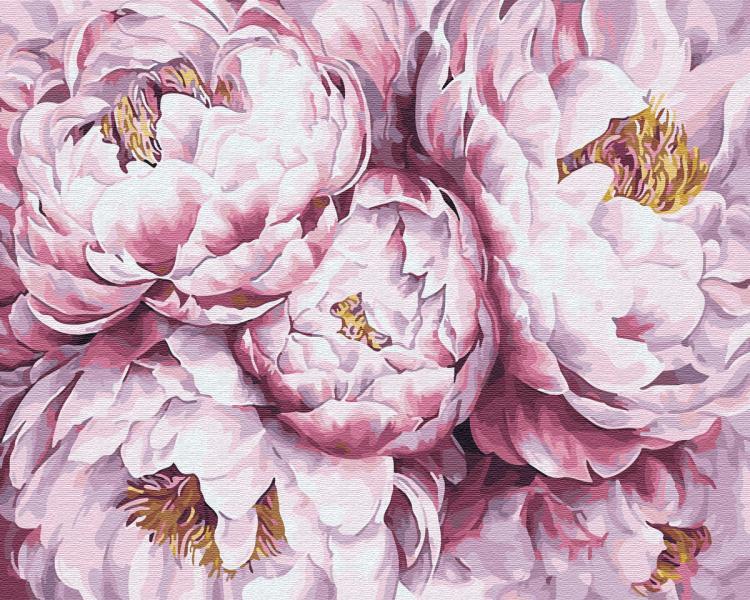 Фото Картины на холсте по номерам, Букеты, Цветы, Натюрморты KGX 29483 Пионы Картина по номерам на холсте 40х50см