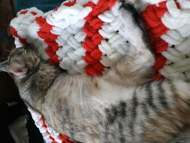 """Полосатый вязаный плед на выписку """"Плетенка"""". Вязание на заказ. Вязаные пледы и подушки из пуффи фото"""