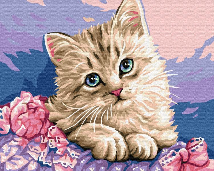 Фото Картины на холсте по номерам, Животные. Птицы. Рыбы... KGX 29696 Синеглазый котенок Картина по номерам на холсте 40х50см