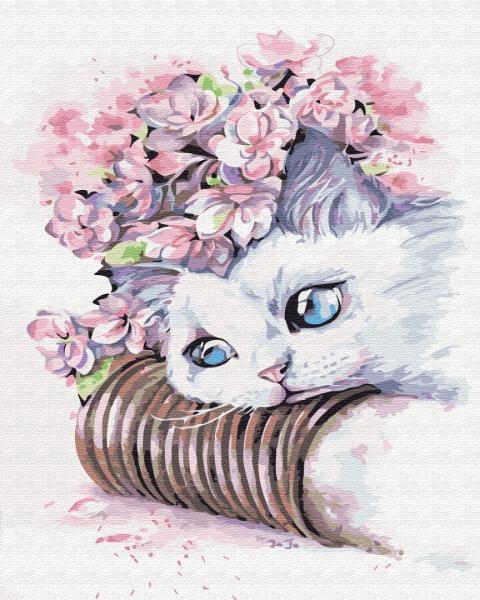 Фото Картины на холсте по номерам, Животные. Птицы. Рыбы... KG 481 Нежный котик Картина по номерам на холсте 40х50см