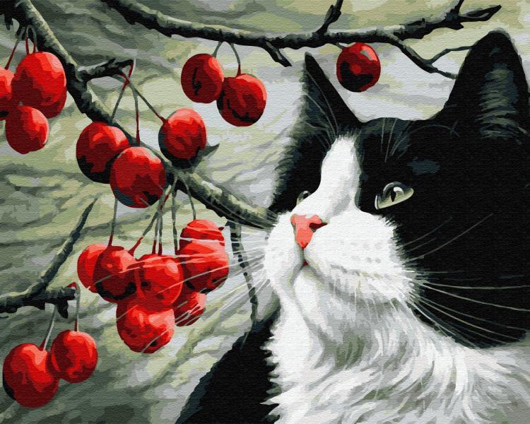 Фото Картины на холсте по номерам, Животные. Птицы. Рыбы... KGX 32534 Кот и ягоды Картина по номерам на холсте 40х50см