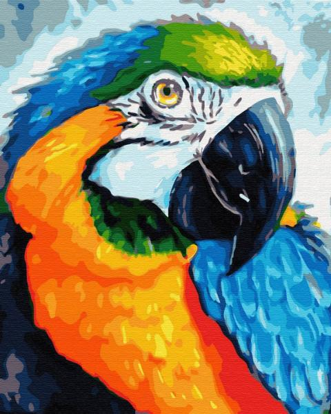 Фото Картины на холсте по номерам, Животные. Птицы. Рыбы... KGX 33153 Красочный попугай Картина по номерам на холсте 40х50см