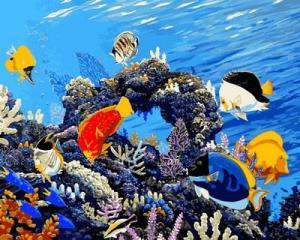 Фото Картины на холсте по номерам, Животные. Птицы. Рыбы... Q 2177