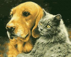 Фото Картины на холсте по номерам, Животные. Птицы. Рыбы... KGX 28848 Кот и Пёс Картина по номерам  40х50см в коробке