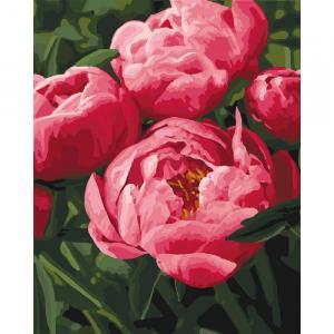 Фото Картины на холсте по номерам, Букеты, Цветы, Натюрморты KH 3049 Самые любимые цветы Роспись по номерам на холсте 40х50см