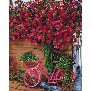 Фото Картины на холсте по номерам, Букеты, Цветы, Натюрморты KH 2260 Отдых в Бельгии Роспись по номерам на холсте 50х40см в коробке