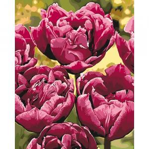 Фото Картины на холсте по номерам, Букеты, Цветы, Натюрморты KH 3057 Изысканная элегантность Роспись по номерам на холсте 40х50см