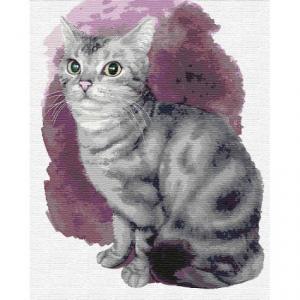 Фото Картины на холсте по номерам, Животные. Птицы. Рыбы... KH4187 Маленький котенок Картина  по номерам на холсте 40х50см
