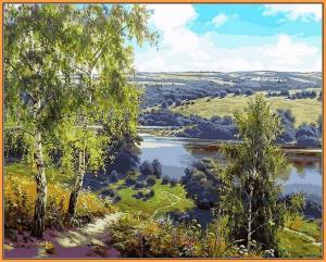 Фото  NBR 959 Дорога к реке (цветной холст в рамке)  Premium 40x50см