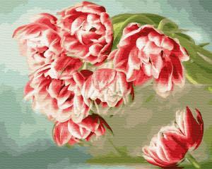 Фото Картины на холсте по номерам, Картины  в пакете (без коробки) 50х40см; 40х40см; 40х30см, Цветы, букеты, натюрморты GX 33221 Розовые тюльпаны по номерам на холсте 40х50см без коробки, в пакете