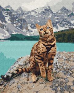 Фото Картины на холсте по номерам, Животные. Птицы. Рыбы... KGX 33346 Кот на берегу Роспись по номерам на холсте 40х50см