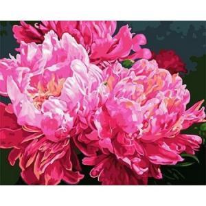 Фото Картины на холсте по номерам, Букеты, Цветы, Натюрморты KGX 25088 Шикарные пионы Картина по номерам на холсте 40х50см
