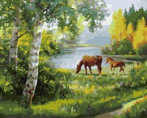 Фото Картины на холсте по номерам, Животные. Птицы. Рыбы... KGX 34062 Лошади на лугу Картина по номерам на холсте 40х50см
