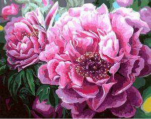 Фото Картины на холсте по номерам, Букеты, Цветы, Натюрморты KGX 4667