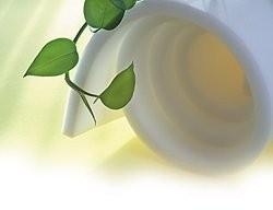 Фото Поролон, синтепон, синтепух (холлофайбер), Мебельный поролон, Поролон  EL 28/42 Поролон листовой мебельный EL28/42 1х2м  толщина 50мм