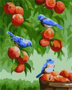 Фото Картины на холсте по номерам, Картины  в пакете (без коробки) 50х40см; 40х40см; 40х30см, Животные, птицы, рыбы KHO 2429