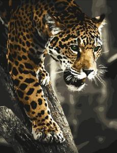 Фото Картины на холсте по номерам, Картины по номерам 50х65см AS 0832 Хищник в джунглях Картина по номерам на холсте ART STORY 50x65см