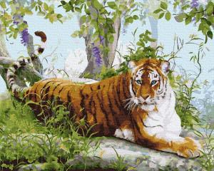 Фото Картины на холсте по номерам, Животные. Птицы. Рыбы... KGX 36523 Амурский тигр Картина по номерам на холсте 40х50см