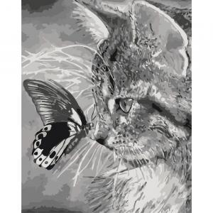 Фото Картины на холсте по номерам, Животные. Птицы. Рыбы... KH 2499 Котёнок и бабочка Роспись по номерам на холсте 50х40см в коробке