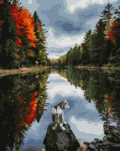 Фото Картины на холсте по номерам, Животные. Птицы. Рыбы... KGX 39251 Щенок у озера  Картина по номерам на холсте 40х50см
