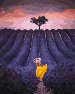 Фото Картины на холсте по номерам, Картины  в пакете (без коробки) 50х40см; 40х40см; 40х30см, Пейзаж, морской пейзаж. GX 39252 Вечер в лавандовом поле  Картина по номерам на холсте 40х50см, без коробки