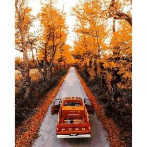 Фото Наборы для вышивания, Вышивка крестом с нанесенной схемой на конву, Пейзаж Картина по номерам Q2188 Дорога через осенний лес   40х50см