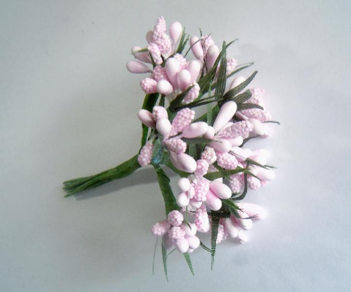Фото Тычинки , добавки,ягодки Тычинки  на  веточке ,  Светло -  Розовые  с  острыми  зелёными  листиками.  Упаковка    10  веточек .