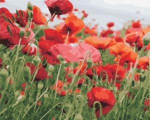 Фото Картины на холсте по номерам, Букеты, Цветы, Натюрморты AS 0352