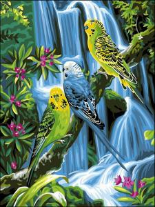 Фото Картины на холсте по номерам, Животные. Птицы. Рыбы... Картина по номерам в коробке Babylon Попугаи у водопада 40x30см (VK 127)