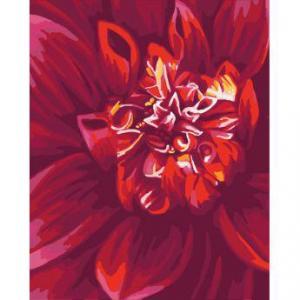 Фото Картины на холсте по номерам, Букеты, Цветы, Натюрморты Картина по номерам в коробке Идейка Яркий георгин 40х50см (KH 2092)