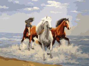 Фото Картины на холсте по номерам, Животные. Птицы. Рыбы... Картина по номерам в коробке Идейка Свежий ветер 40х50см (KH 2430)