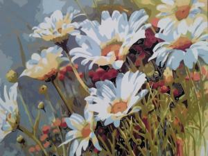 Фото Картины на холсте по номерам, Букеты, Цветы, Натюрморты Картина по номерам в коробке Mariposa Ромашковое поле 40х50см (Q1439)