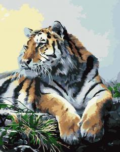 Фото Картины на холсте по номерам, Животные. Птицы. Рыбы... Картина по номерам в коробке Идейка Гордый тигр 40х50см (KH 2460)